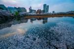parque-ueno-de-tokyo-1024x682